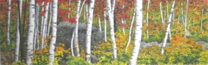 Birches and Boulders